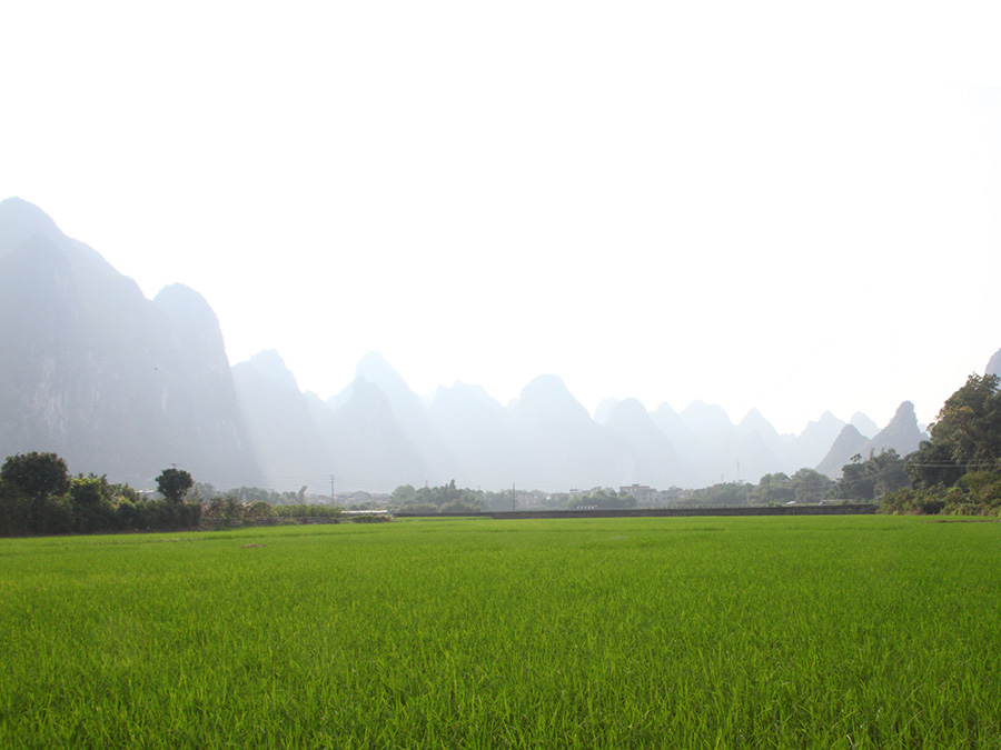 Atelier_Touchard_Guilin03
